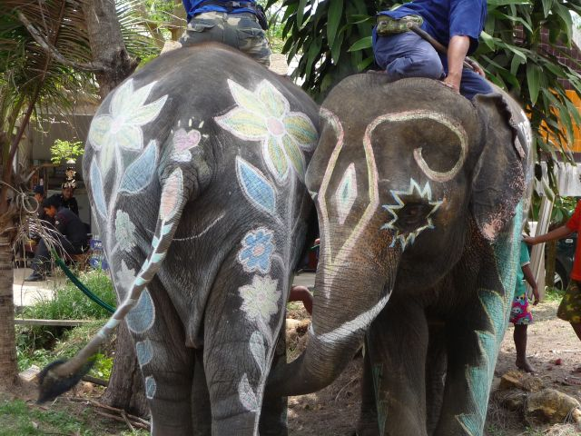 Painted elephants, part of the Songkran (Thai New Year ) celebrations in April