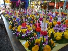 Loy Krathong Festival in November