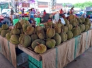 Chantaburi Durian