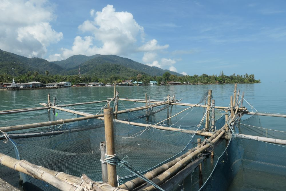 Keep nets at the pier in Dan Mai