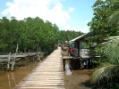 koh-chang-bicycle-11