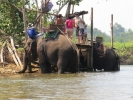 Visitors off the elephant and ready to swim