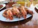 crab-farm-10