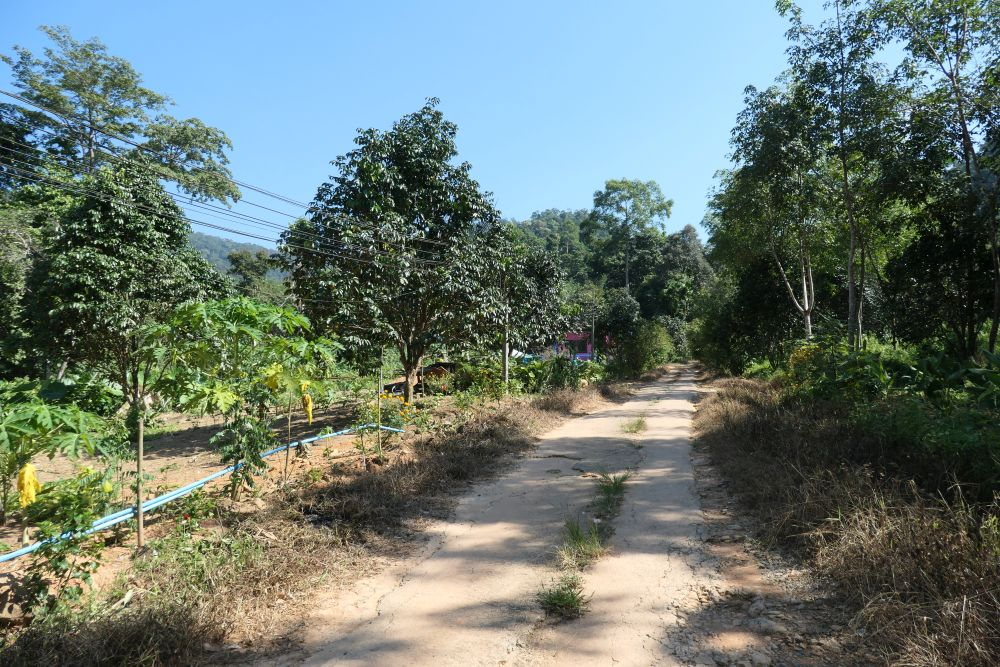 Track leading inland