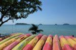 Kayak to the islands