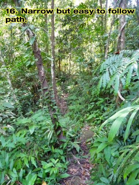 kai-bae-waterfall-walk-16c