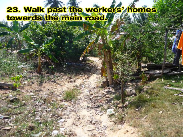 kai-bae-waterfall-walk-23b