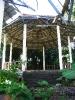Overgrown sala