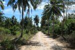 Klong Kloi highway