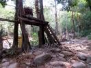 Elephant platform