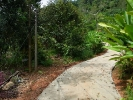 The road is paved, walk around 50 metres