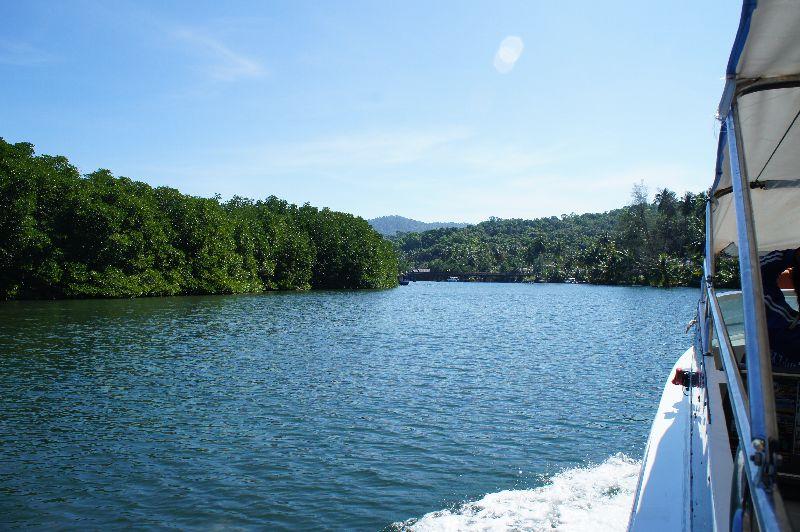 Klong Chao Estuary