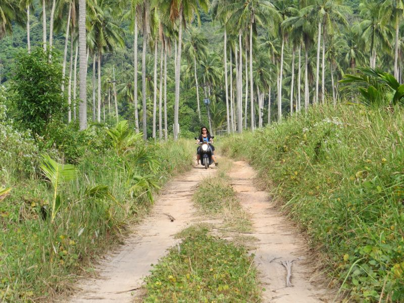 Explore Koh Kood by Scooter