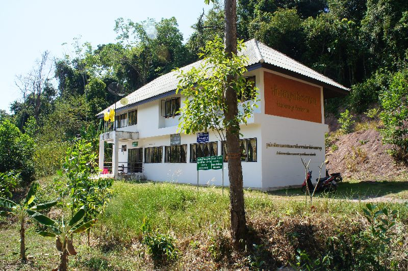 Koh Kood library