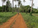 Around Koh Mak