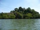 A lush, tree clad island