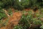 landslide2-oct10-19