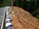 landslide1-2