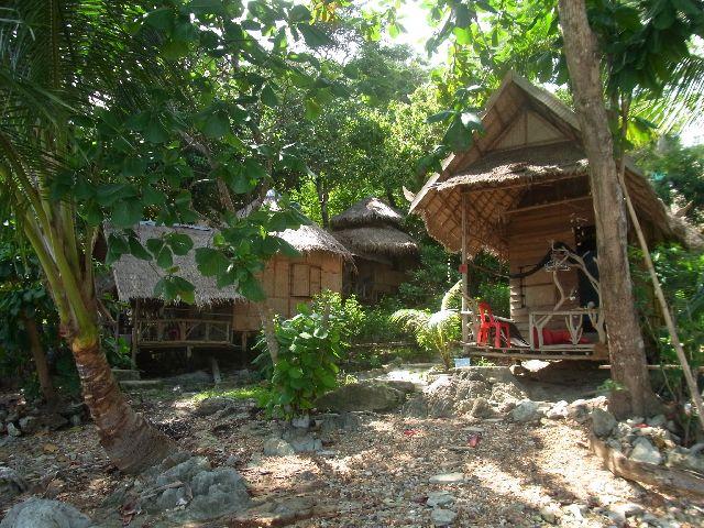 Treehouse Hut