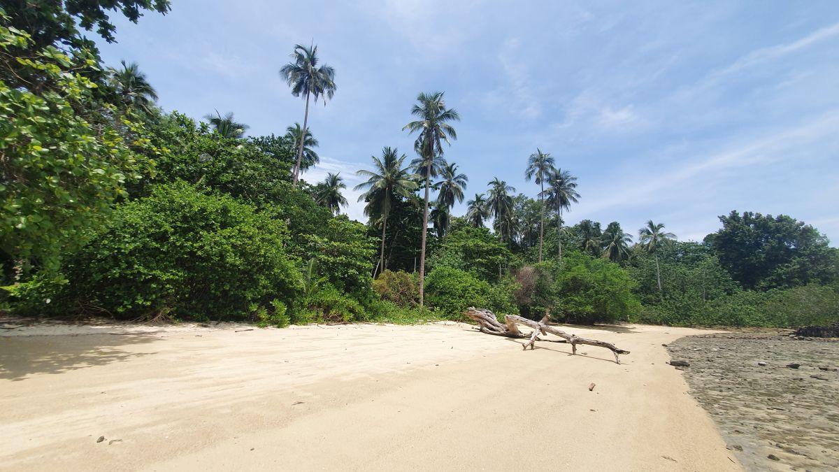 Walking to Koh Man Nai 2020