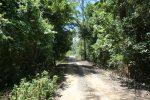 North Klong Prao -075