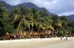 KC Resort, White Sand beach