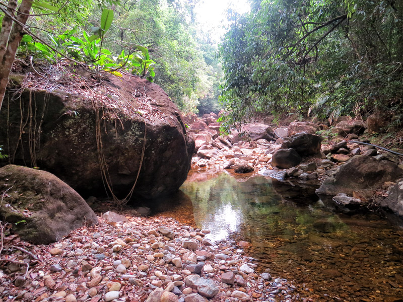 Some large boulders in the river bed