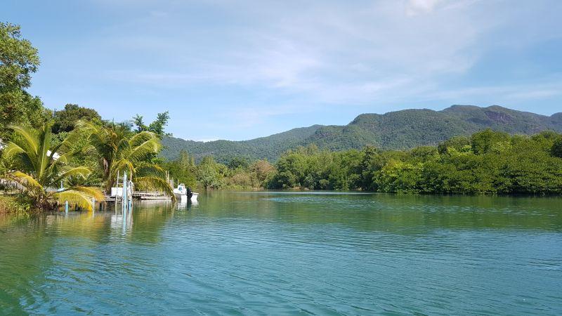 Towards the mangroves