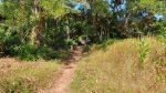 Entrance to Salakkok Mangrove Walkway