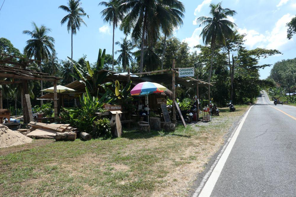 Coconut Organic Garden