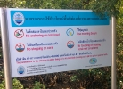 Dont touch the coral in the mangroves