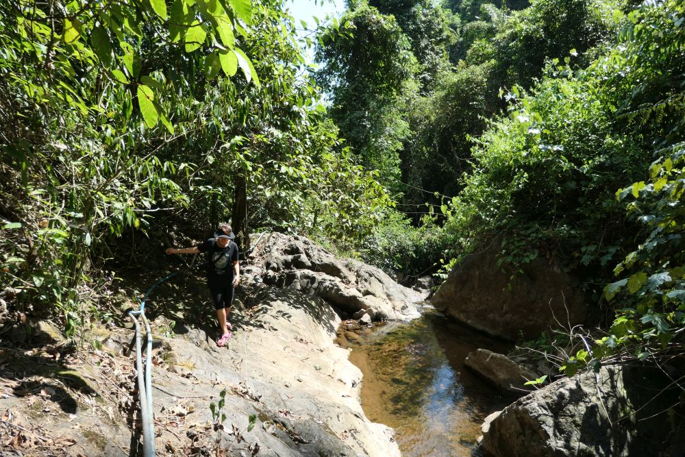 Walking to Klong Neung waterfall