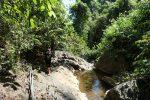 Walking to Klong Neung waterfall