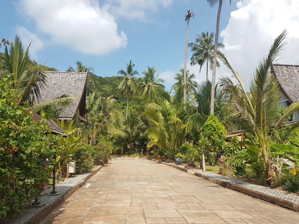 Tropical gardens roadside