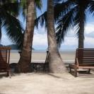 beachplots-17may-04-540x405
