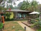Tara Coffee Home, Dan Mai