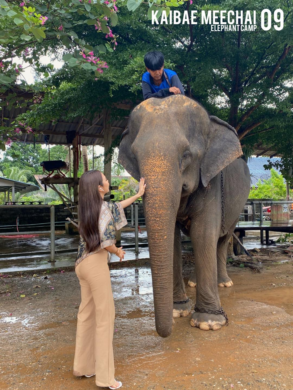 Kai Bae Elephant camp