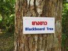 treenames1