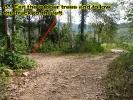 klong-prao-walk8