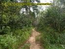 klong-prao-walk9