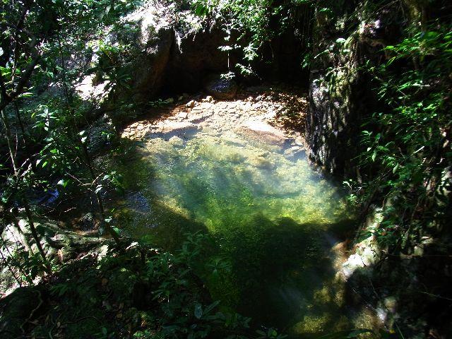 Lovely jungle pool
