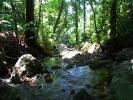 More riverbed walking