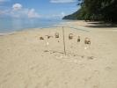 white-sand-beach-06