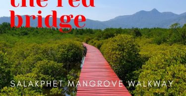 View from Salakphet Mangrove walkway