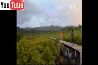 salakphet-mangrove