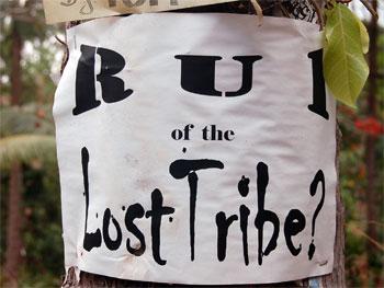 Try LostTribeReunited.com