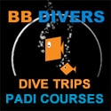 Koh Chang Dive trips & Dive Courses