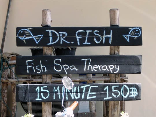 fish-spa-koh-chang