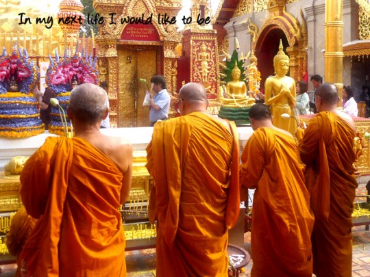 Chiang Mai Temple & Monks