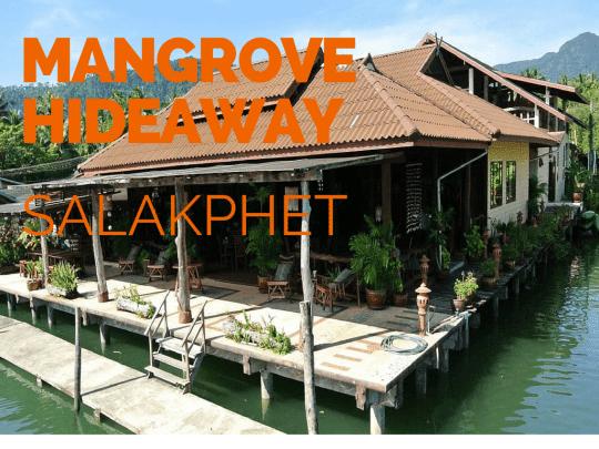 Mangrove hideaway